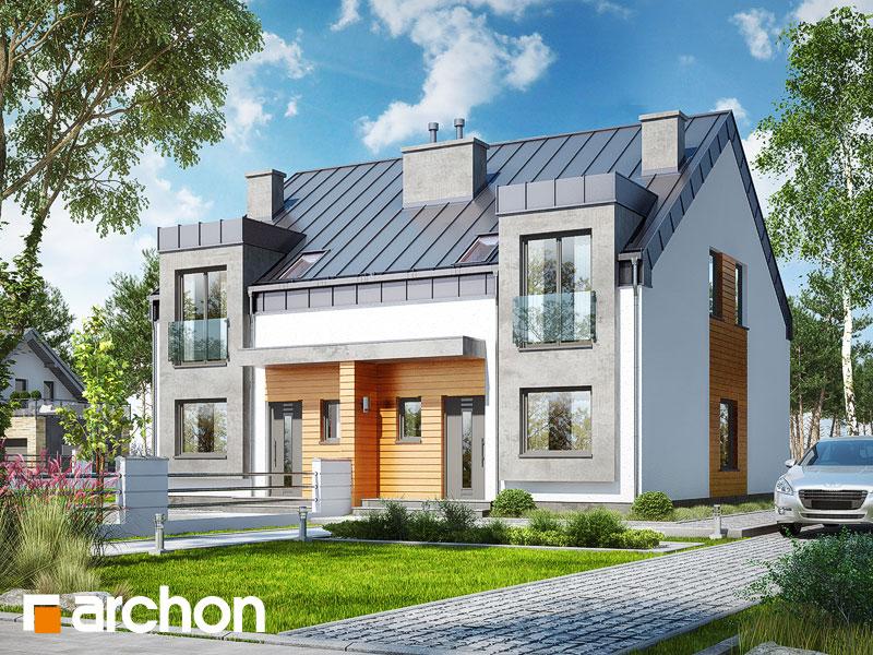 gotowy projekt Dom pod miłorzębem 9 (R2N) widok 1