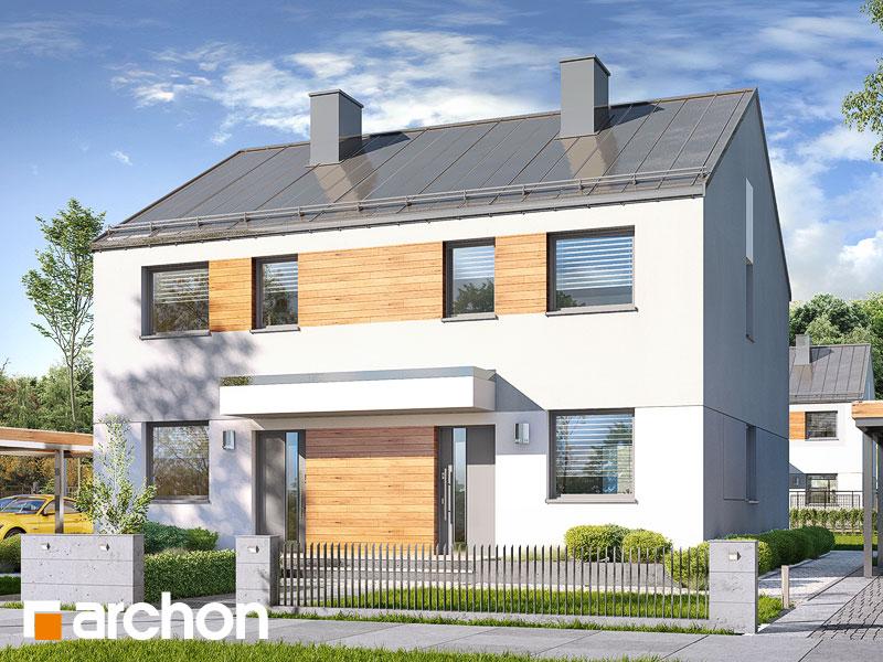 gotowy projekt Dom w riveach (R2) widok 1