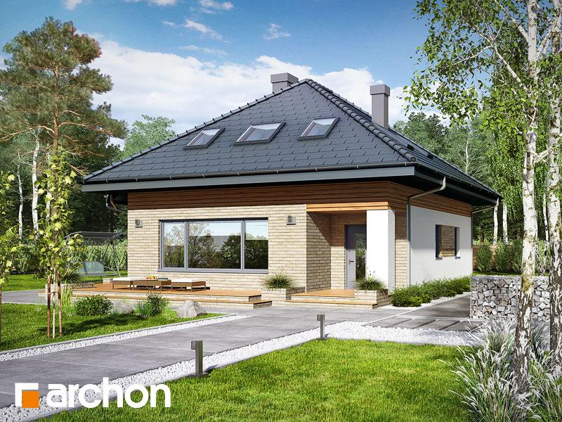 gotowy projekt Dom w lilakach (PD) widok 1