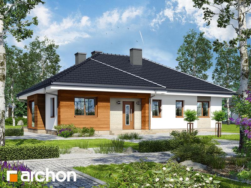 gotowy projekt Dom w bodziszkach widok 1