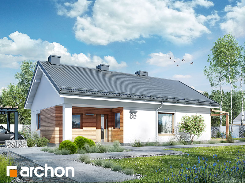 gotowy projekt Dom w cedralach widok 1
