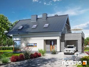 projekt Dom w cytryńcach (P) lustrzane odbicie 1