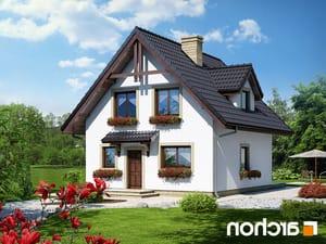 projekt Dom na wzgórzu lustrzane odbicie 1