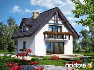 projekt Dom na wzgórzu lustrzane odbicie 2