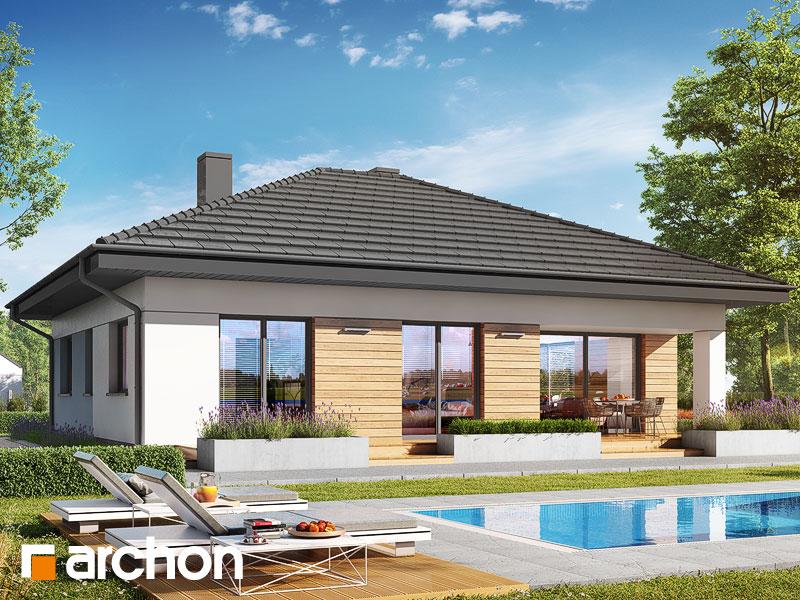 gotowy projekt Dom w modrzykach 2 (W) widok 1