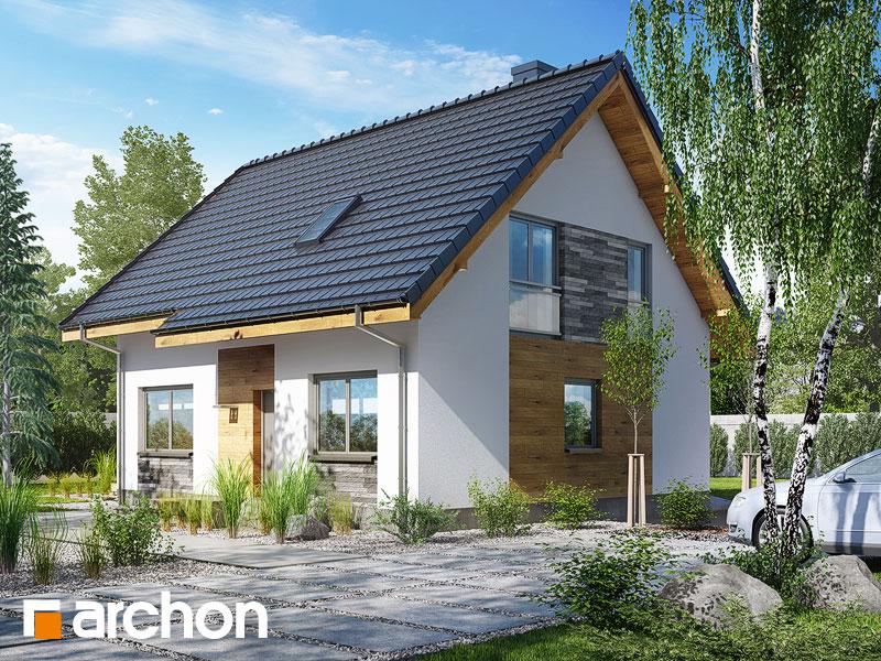 gotowy projekt Dom w zielistkach 3 (T) widok 1