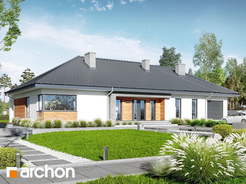 gotowy projekt Dom w kłosówkach (G) widok 1