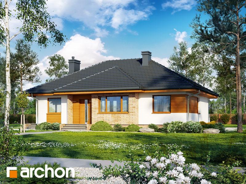 gotowy projekt Dom w akebiach (W) widok 1