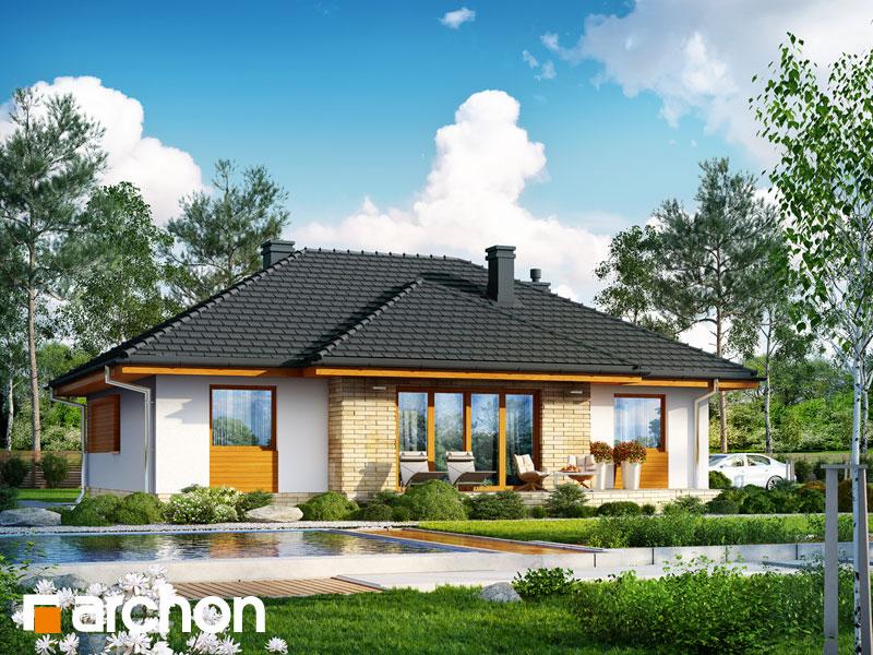 gotowy projekt Dom w akebiach (W) widok 2