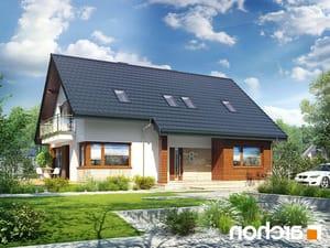 projekt Dom w idaredach 3 (P) lustrzane odbicie 1