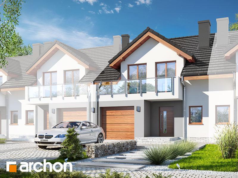 gotowy projekt Dom w klematisach 21 (S) widok 1