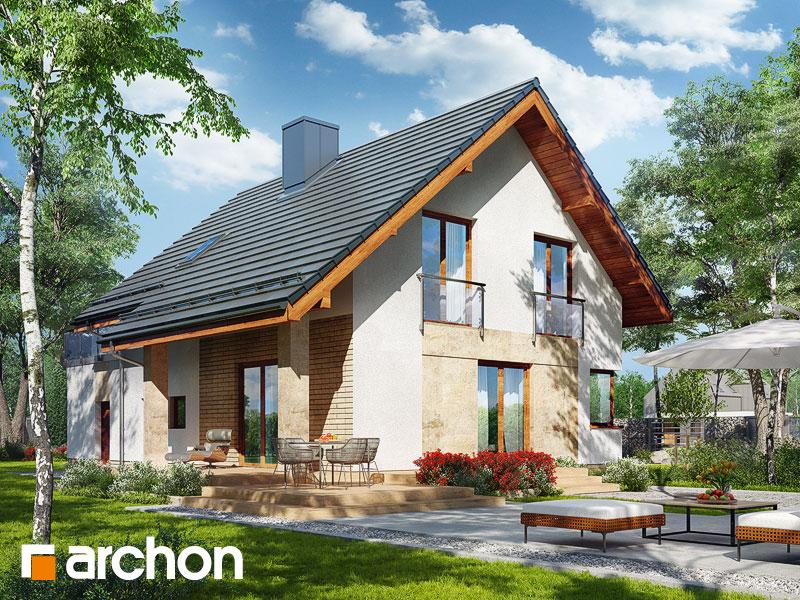 gotowy projekt Dom w arizemach (T) widok 1