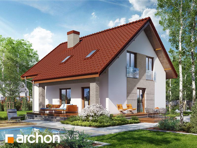Widok 1 projekt dom w pieknotkach 2  289