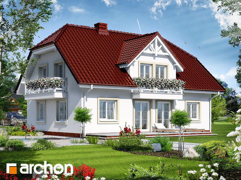 gotowy projekt Dom w gladiolach 2 widok 1