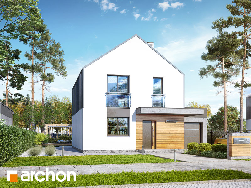 projekt Dom w arkadiach 3 (G) widok 1