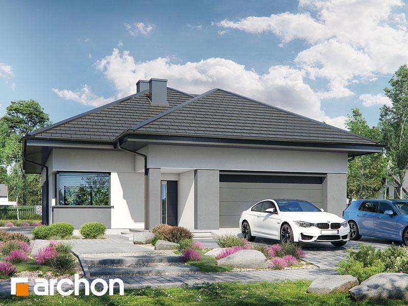 gotowy projekt Dom w renklodach 9 (G2) widok 1