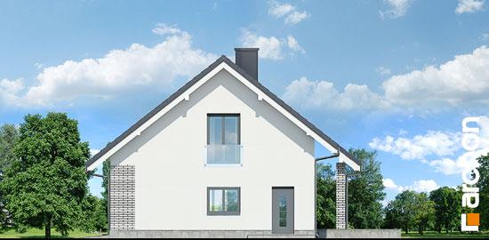 Elewacja boczna projekt dom w wisteriach 2 p  265