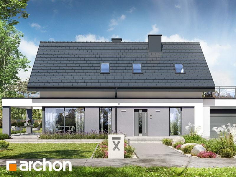 gotowy projekt Dom w szyszkowcach 3 (G) widok 1