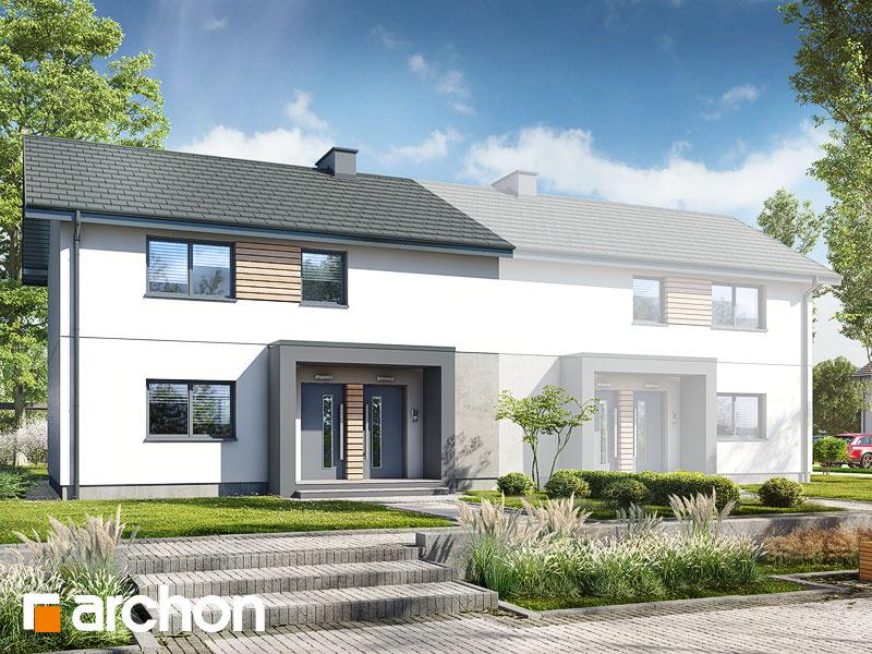 gotowy projekt Dom w pileach  (R2B) widok 1