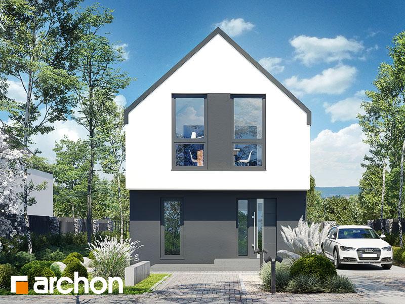 gotowy projekt Dom w muszkatach 4 (E) widok 1