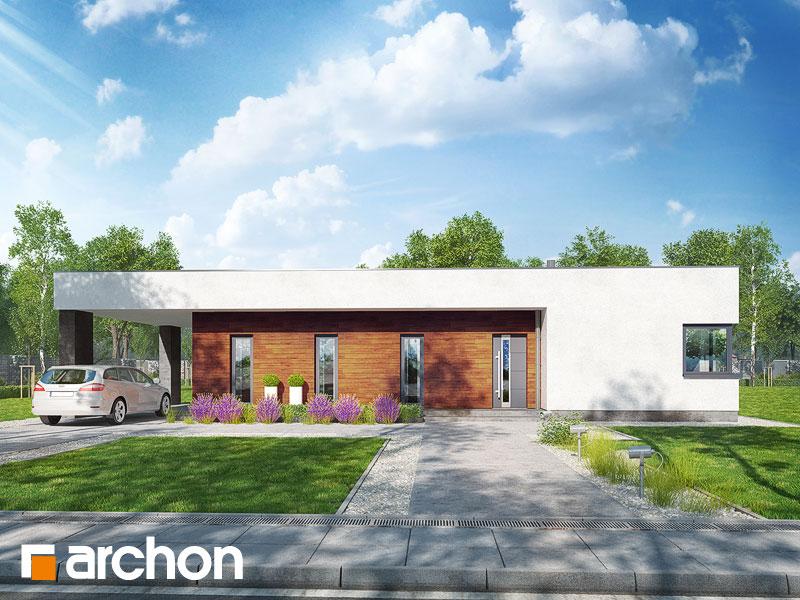 gotowy projekt Dom w plumeriach widok 1