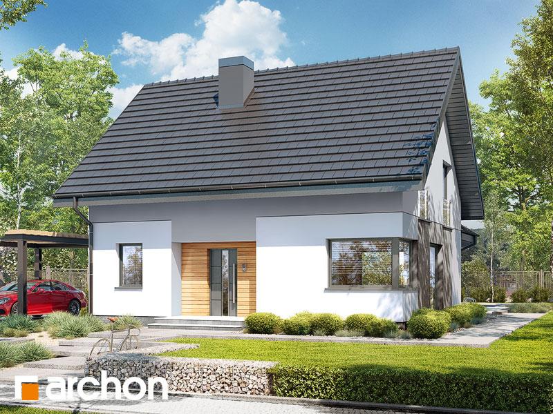 gotowy projekt Dom w zielistkach 15 widok 1