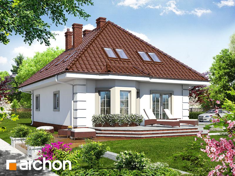 gotowy projekt Dom w aksamitkach widok 1