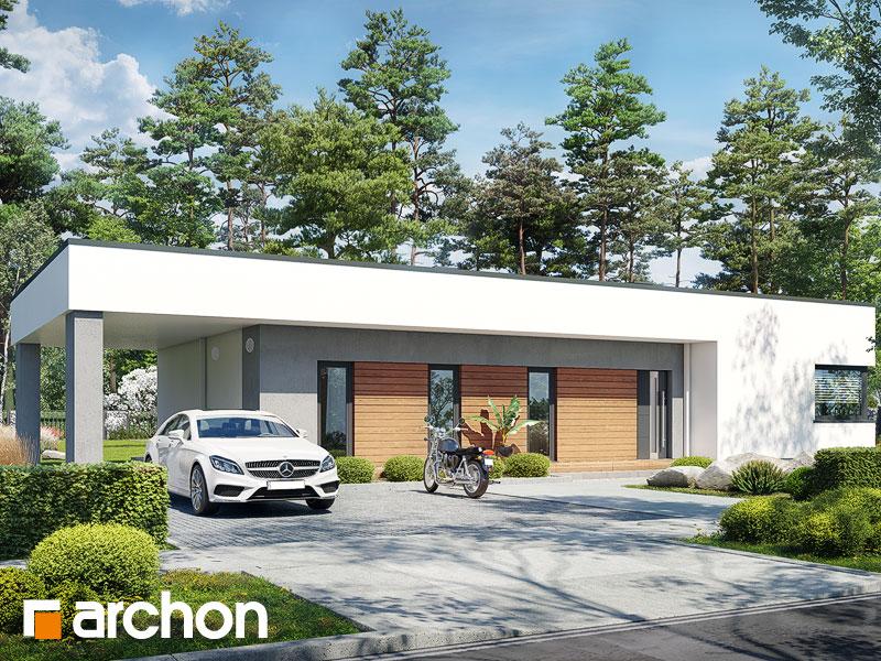 gotowy projekt Dom w plumeriach 6 (E) widok 1