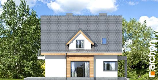 Elewacja boczna projekt dom w miodunkach n  265