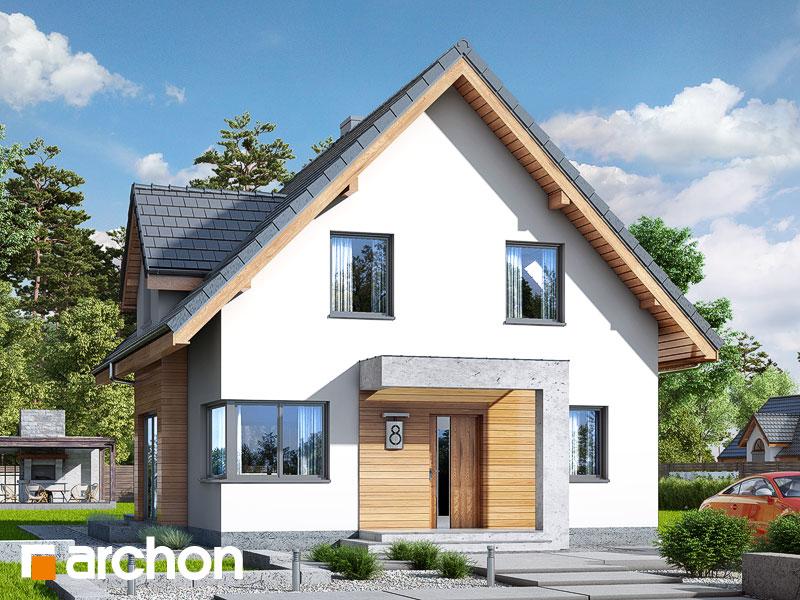 gotowy projekt Dom w miodunkach (N) widok 1