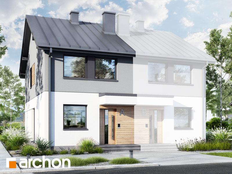 gotowy projekt Dom w riveach 4 (B) widok 1