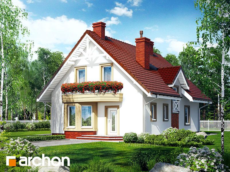 gotowy projekt Dom pod pistacją widok 1