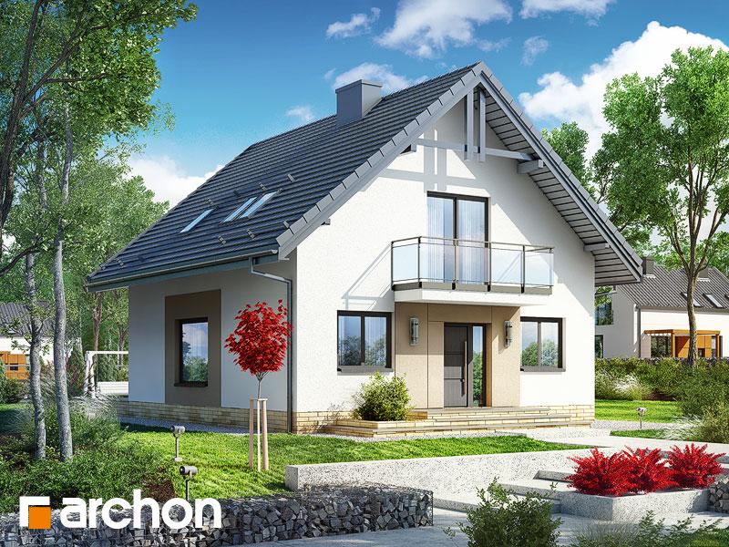 gotowy projekt Dom w rododendronach 21 (NT) widok 1