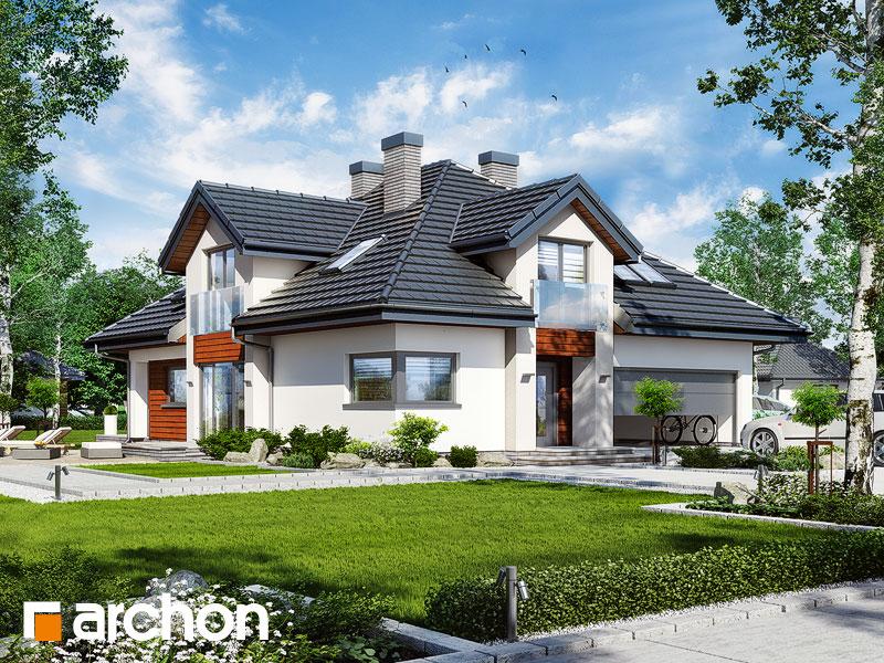 gotowy projekt Dom w hebe 2 widok 1