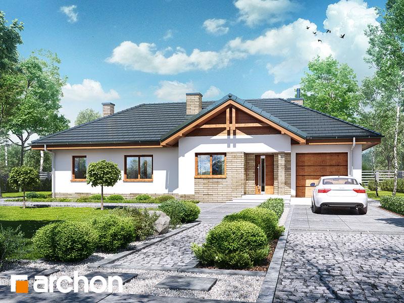 gotowy projekt Dom w nerinach 6 widok 1