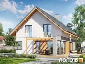 projekt Dom w wiosnówkach lustrzane odbicie 1