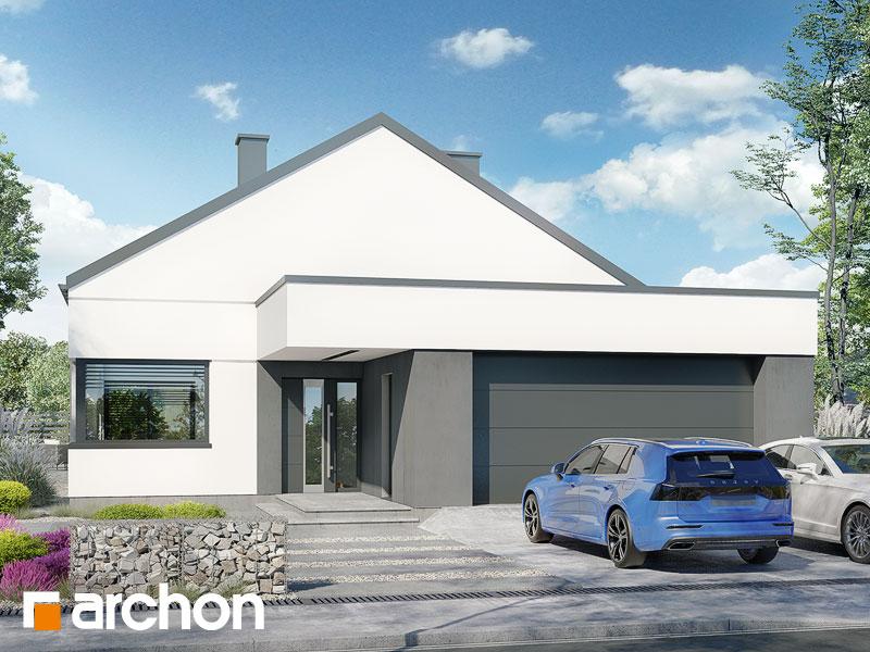 gotowy projekt Dom w renklodach 21 (G2) widok 2