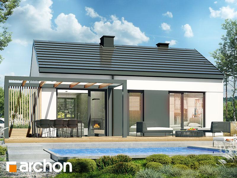 gotowy projekt Dom w kosaćcach 4 (N) widok 1