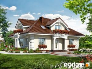 projekt Dom w jeżówkach lustrzane odbicie 1