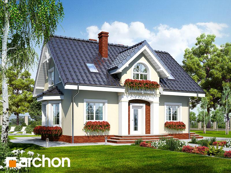 gotowy projekt Dom w kolendrze 2 widok 1