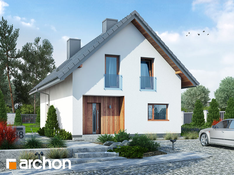 gotowy projekt Dom pod sykomorą 2 widok 1