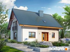 projekt Dom w zielistkach 6 (PT) lustrzane odbicie 1