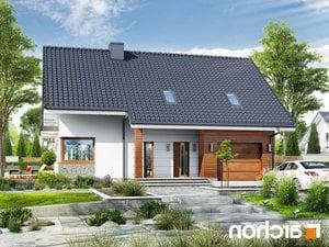 projekt Dom w aurorach (P) lustrzane odbicie 1