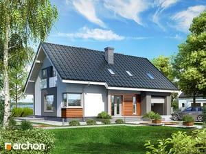 projekt Dom w złoci