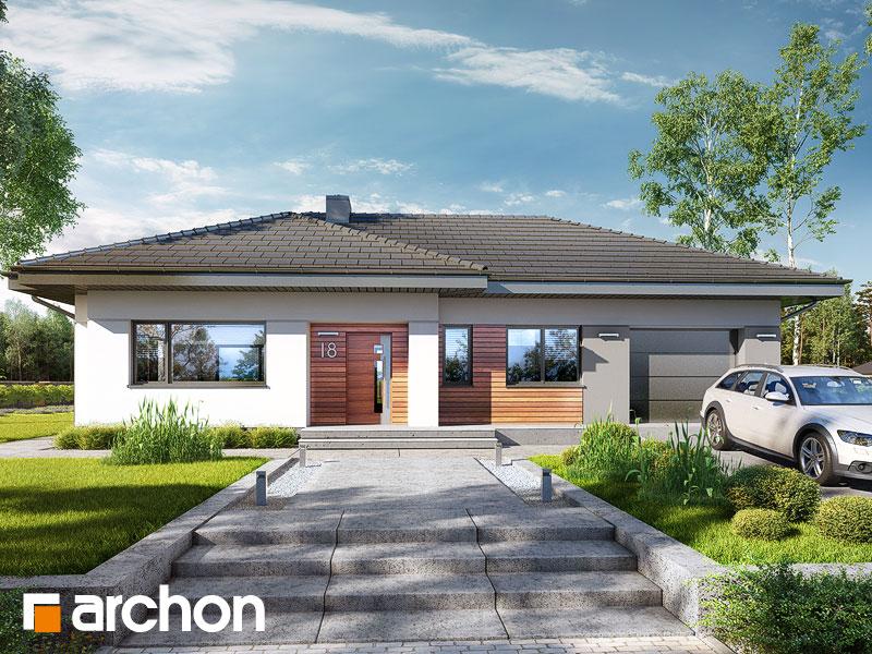 gotowy projekt Dom w modrzykach 2 widok 1