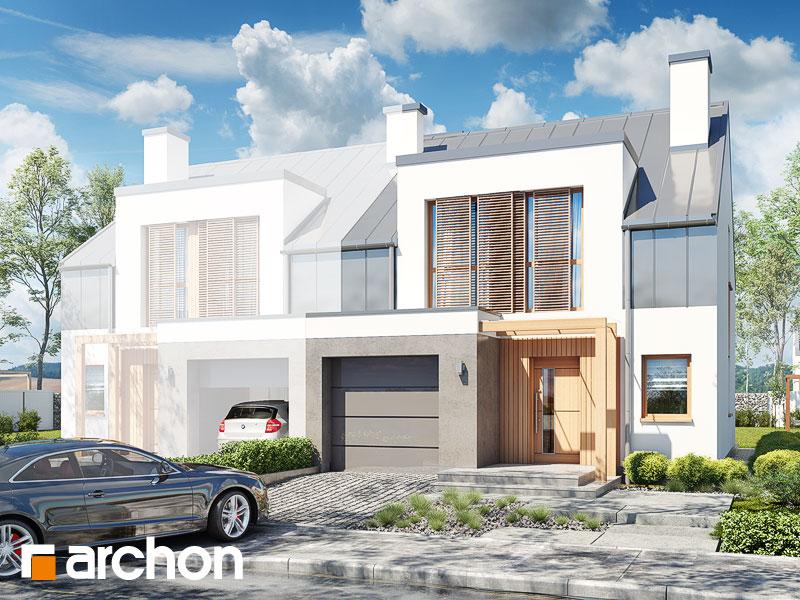 gotowy projekt Dom w klematisach 20 (BN) widok 1