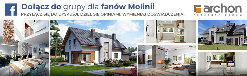 Fb molinie
