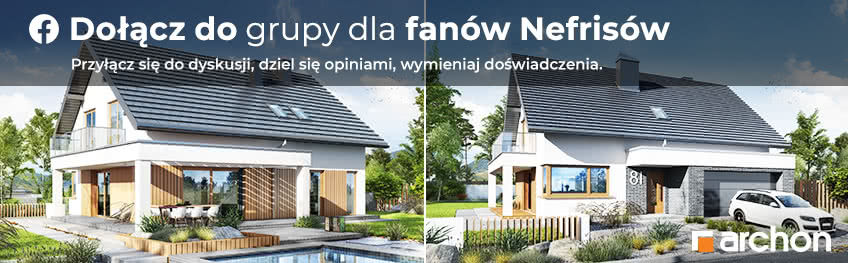Fb nefrisy